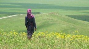 Хиджаб и вокруг него