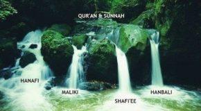 Что представляют собой четыре мазхаба?