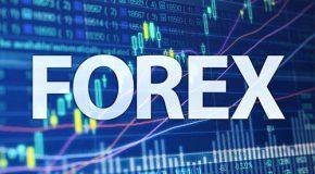 Дозволено ли торговать на Форекс?