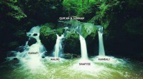 Скачать книгу шейха Саида Рамадана аль-Буты (рахимахуллах) «Путь размечен. Отказ от мазхабов — опаснейшее из нововведений, угрожающих исламскому шариату».